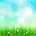 DD-Spring-Background-74534-Preview
